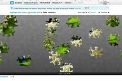 puzzle-Dorottya